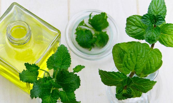 Alitosi, i rimedi naturali sono efficaci?